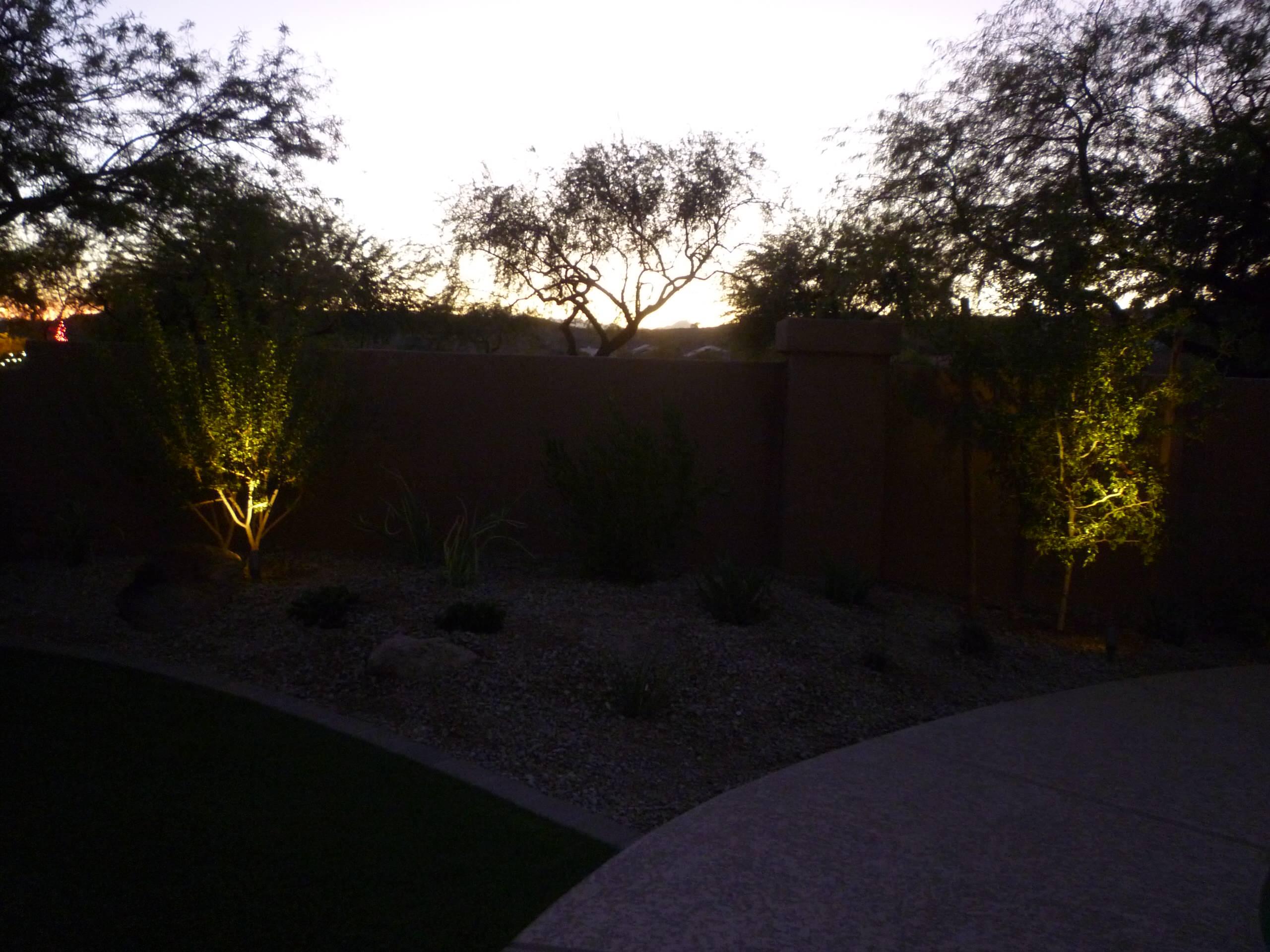 Landscape Area w/ Accent Lighting