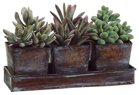 Artificial Succulent Garden in Tin 3-Pot Planter