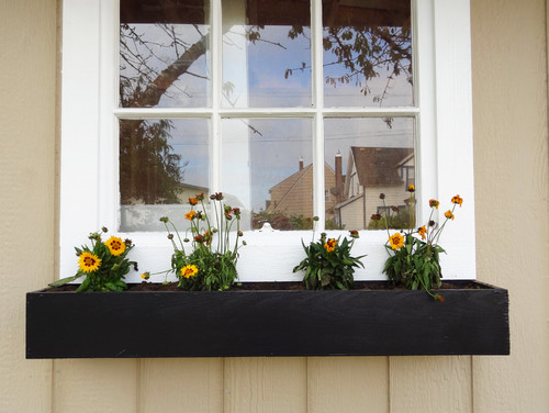 houzz build a modern window planter box revamp homegoods. Black Bedroom Furniture Sets. Home Design Ideas