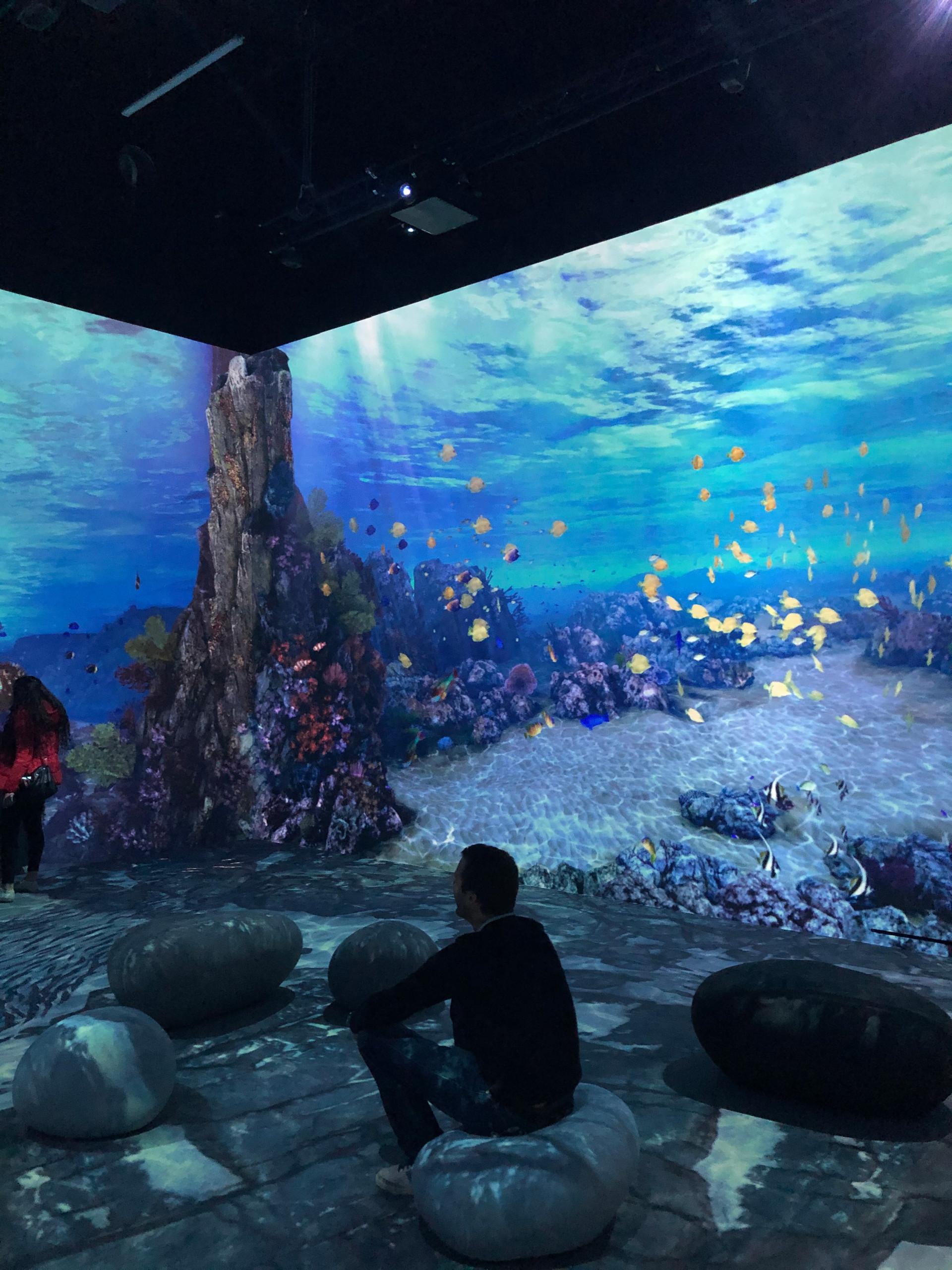 Aquarium virtuel interactif