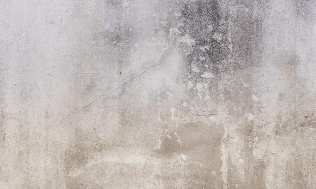 Warm Concrete Mural Wallpaper Contemporary Wallpaper by Walls