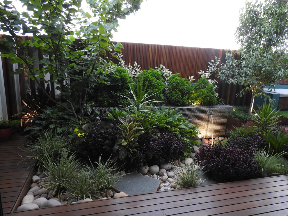 Coogee courtyards 2 - Contemporary - Perth - by Cultivart ...
