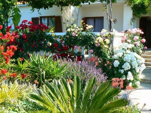 my garden mediterranean