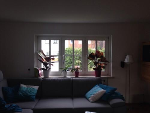 Fenster deko wohnzimmer for Wohnzimmer fenster
