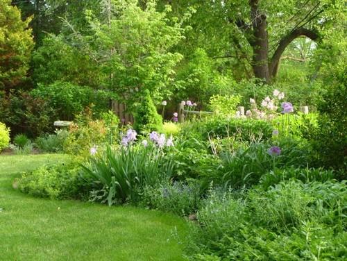 Correct irrigation design for perennialshrub border