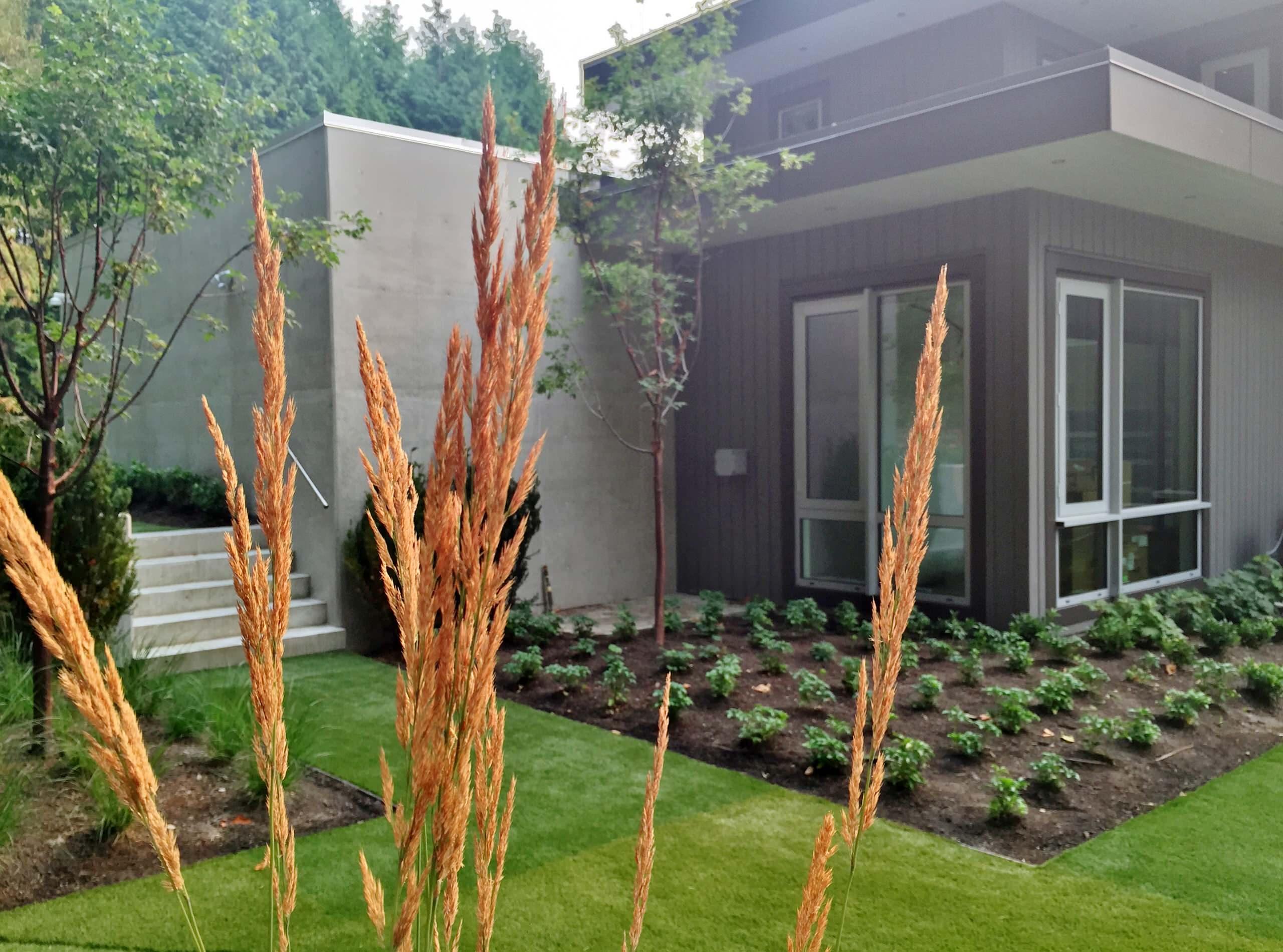British Properties Contemporary  II