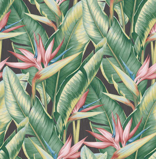 Arcadia Pink Banana Leaf Wallpaper Tropical Wallpaper