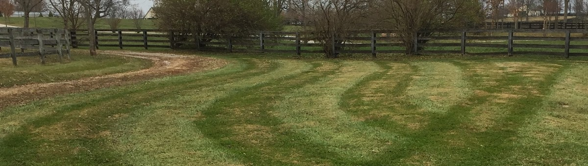 Leisure Lawn Landscaping Georgetown Ky Us 40324