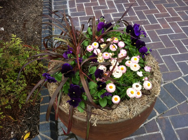Fall container plantings traditional