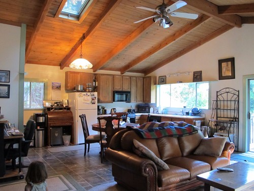 Great Room With Vaulted Ceiling Lighting And Kitchen Layout