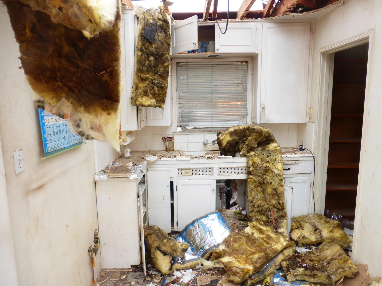 Burnell Drive Kitchen - Before
