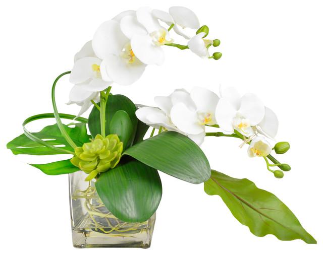 Phalaenopsis Orchid Arrangement In Vase Asian Artificial Flower Arrangements By Creative Displays Inc Houzz