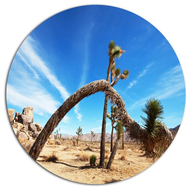 Shop Houzz Design Art Usa Curved Joshua Tree In Desert