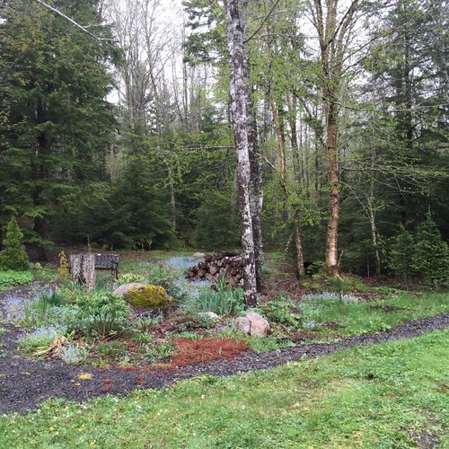 Help me relax and enjoy my cottage garden for Help me design my garden