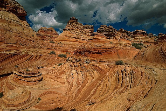 coyote buttes in desert wallpaper wall mural self ForDesert Mural Wallpaper