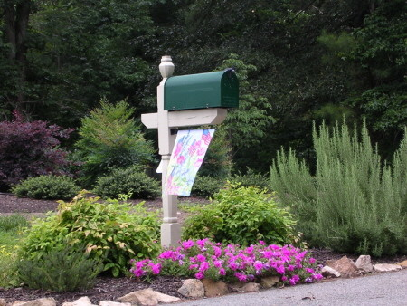 Tough Mailbox Planting Traditional Landscape