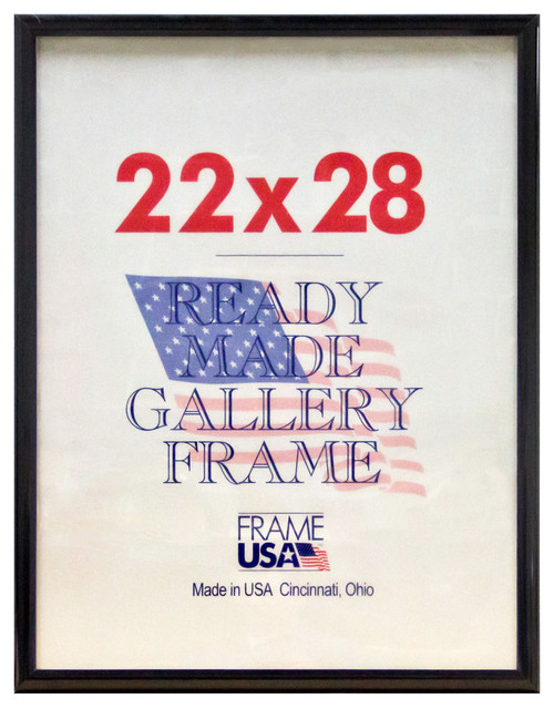 "Black Deluxe Poster Frame, 22""x28"" traditional-picture-frames"
