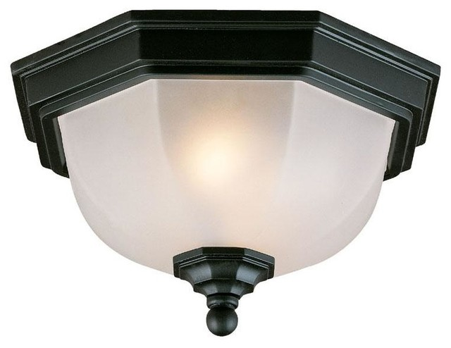 Flush Mount Collection Ceiling Mount 2 Light Outdoor Light