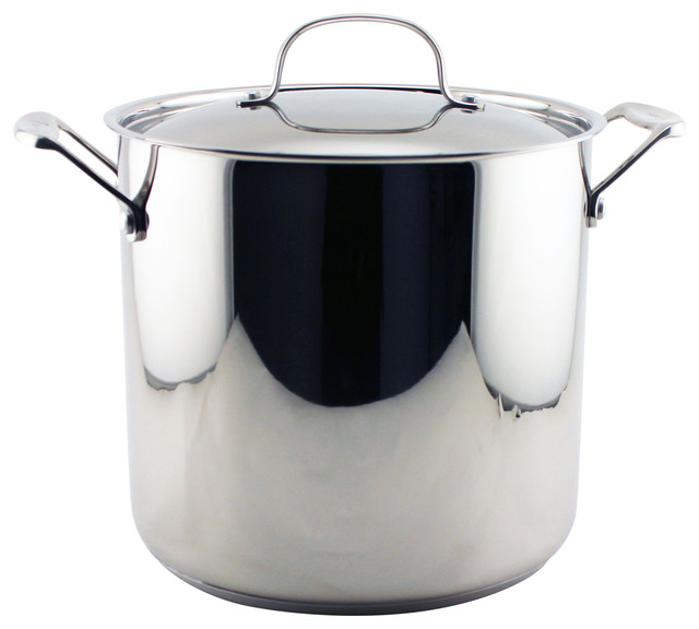 Earthchef Premium Stockpot 10 Quart With Lid.