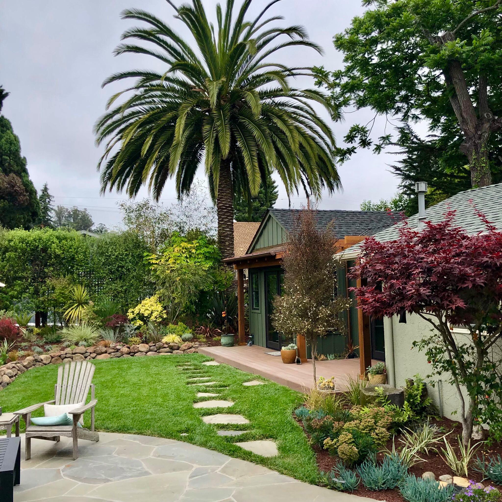Backyard after renovation
