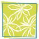 Rock Spring Design Group LLC (David Verespy, ASLA)
