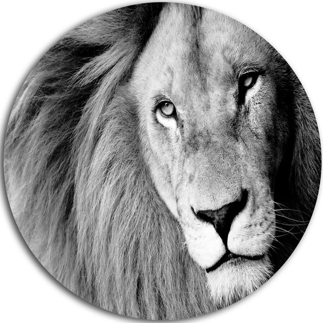 Lion Head In Grey, Animal Digital Art Round Metal Wall Art