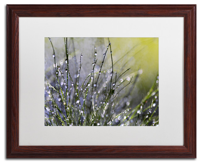 "Beata Czyzowska Young &x27;spring Morning&x27; Art, Wood Frame, 16""x20"", White Matte."