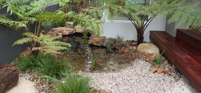 Coastal Garden Natural Pond Coastal Perth By Wild