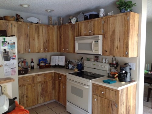 re: help with these ugly kitchen cabinets