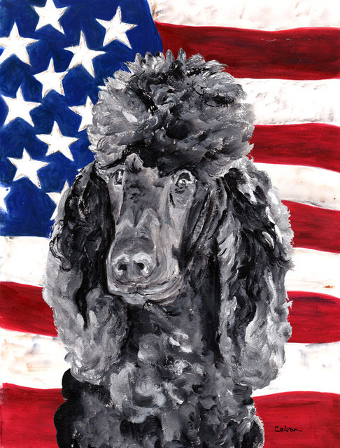 Black Standard Poodle With American Flag Usa Flag Canvas