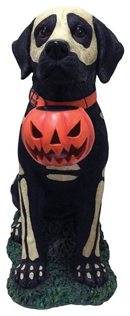 """Dhi Halloween Painted Skeleton Dog With Pumpkin Decor, 19""""x10.8""""."""