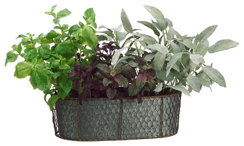 silk plants direct herb garden, pack of 1 - traditional - artificial