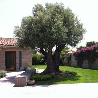 La Serra Fiorita Assemini Ca It 09032