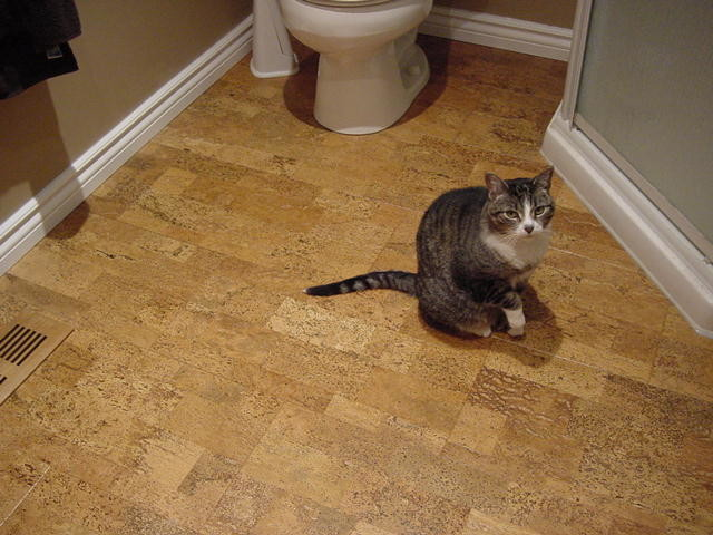 cork flooring in the bathroom. Jelinek Cork Flooring Traditional In The Bathroom G