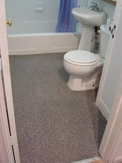 Help! Remove/Replace bathroom floor down to joists