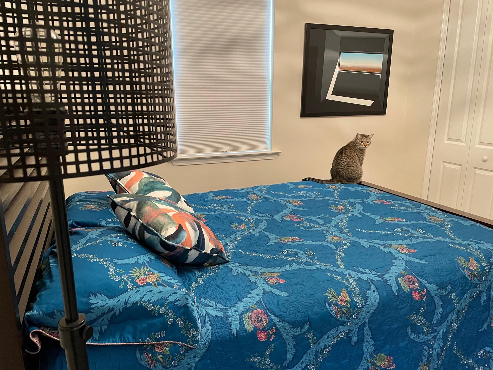 Margarittaville Design Guest Bedroom