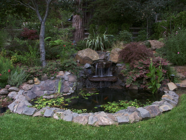 Mill valley garden for Garden design mill valley