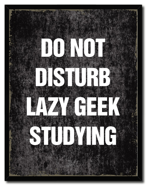 Do Not Disturb Lazy Geek Studying Funny Quote, Canvas, Picture Frame,  22