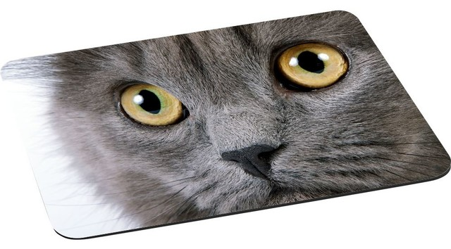 Gray Fluffy Cat Face Close-Up With Yellow Eyes Mouse Pad.
