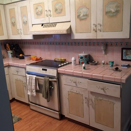 a old florida house with hand painted kitchen cabinets love the cabinets hate the countertops any suggestions new stainless stove and frige ordered
