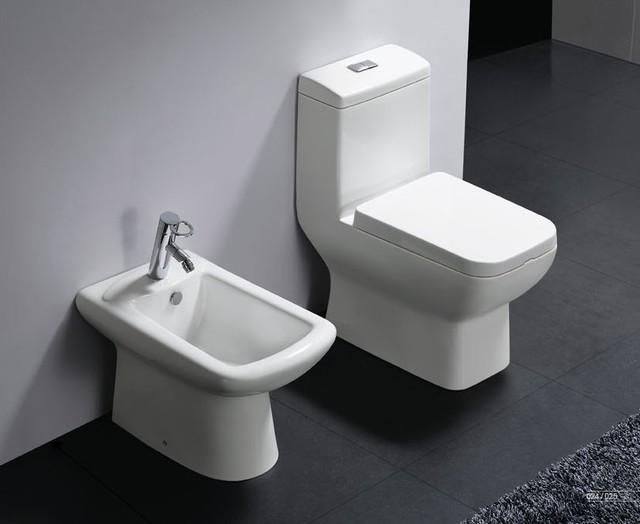 Trieste Modern One Piece Dual Flush Bathroom Toilet
