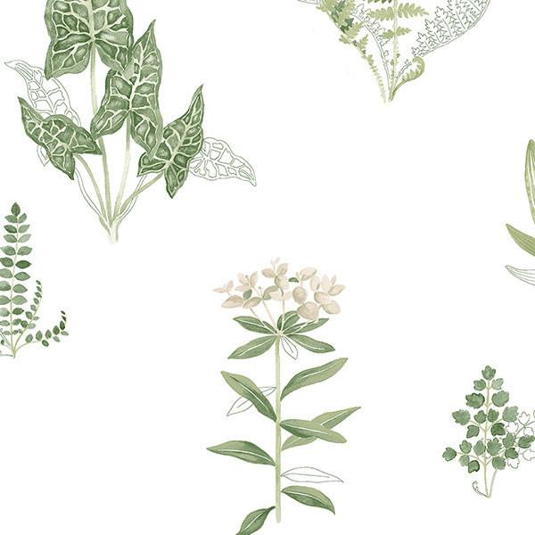 Ferns Green, Beige, Pa34227, Double-Roll.
