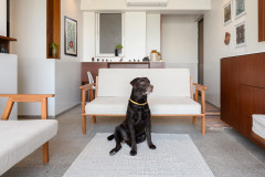 Houzz Tour: A Stylish Flat Designed for People and Pets Alike