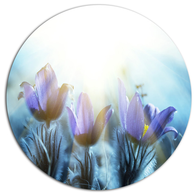 Houzz Spring Landscaping Trends Study: Blooming Blue Spring Flowers, Flower Disc Metal Artwork