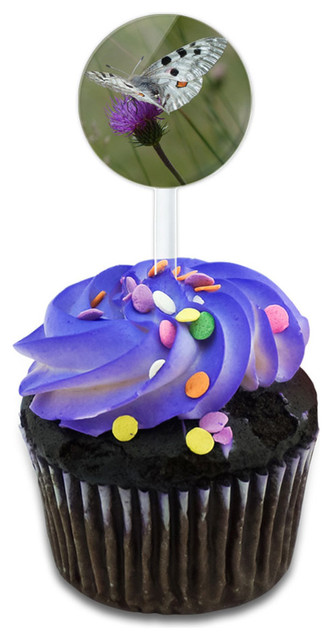 Apollo Butterfly Cupcake Toppers Picks Set.
