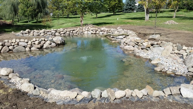Dexter mi large pond build traditional landscape for Building a large pond