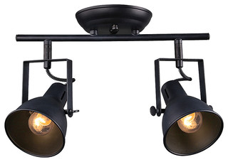 track lighting styles transitional. 2-Light Retro-Style Spotlight Ceiling Lamp - Transitional Spot Lights By LNC HOME Track Lighting Styles
