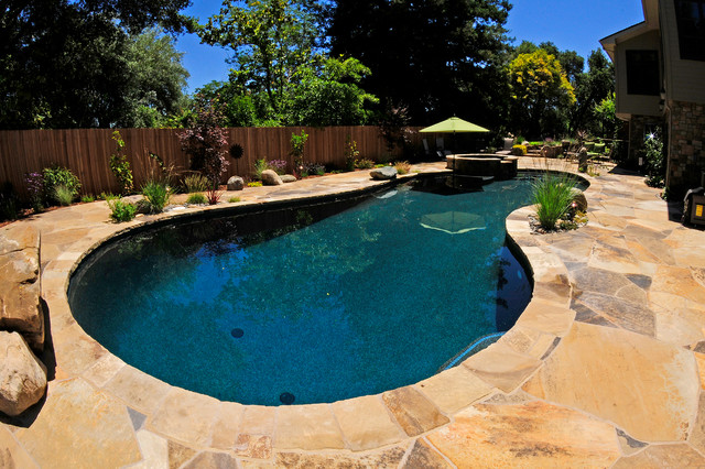 natural pool with flagstone coping patio rustic san francisco by royal pools of santa