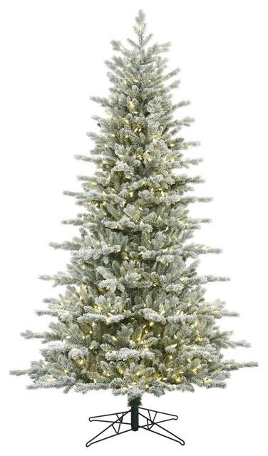 Frasier Fir Christmas Tree.10 Frosted Eastern Frasier Fir Artificial Christmas Tree With 1050 Warm Whit