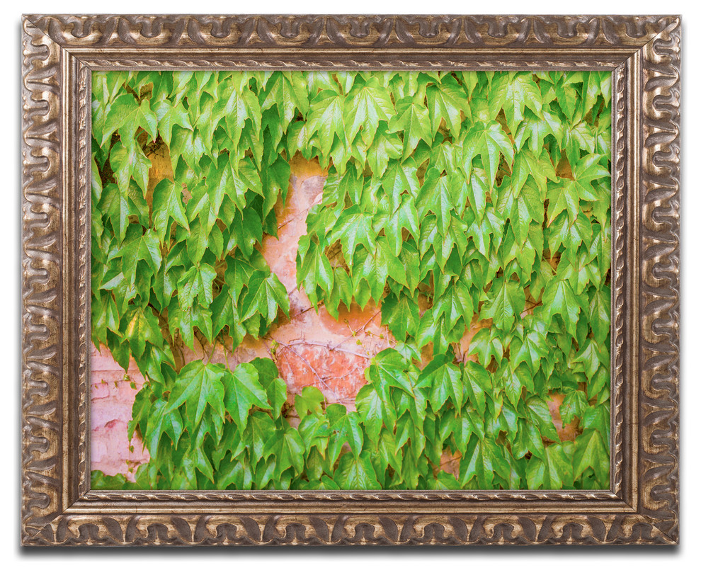 Ariane Moshayedi Ivy Wall 2 Ornate Framed Art Traditional Prints And Posters By Trademark Global